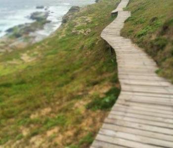 Pathways drug addiction treatment