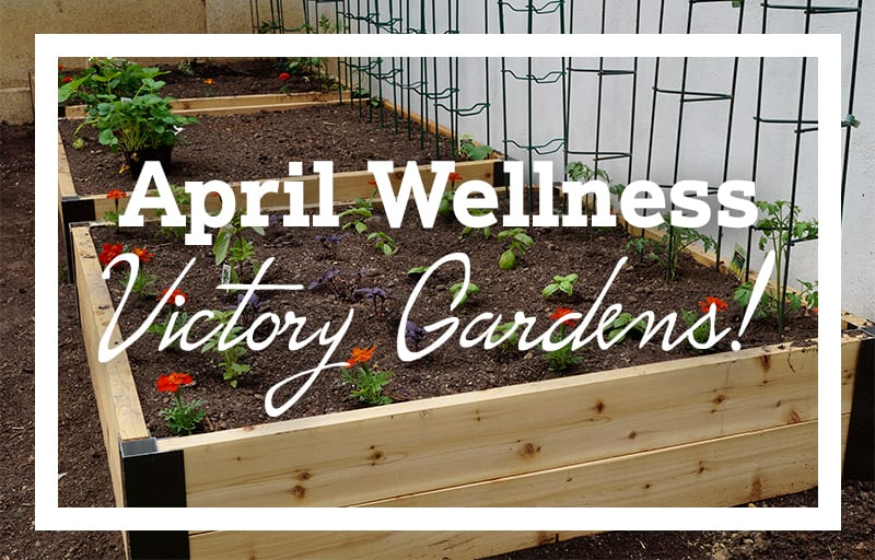April Wellness: Plant a Victory Garden!