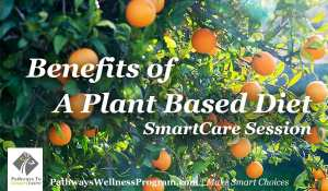The Benefits of a Plant-Based Diet.