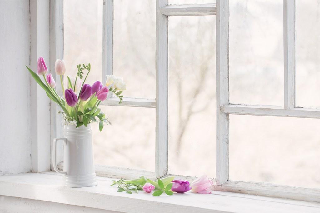 Spring Inside Health