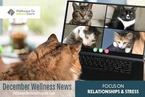 December Wellness: Stress Management