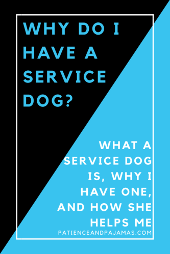 Ever wondered just what makes a service dog a service dog? Read about why I have one here!