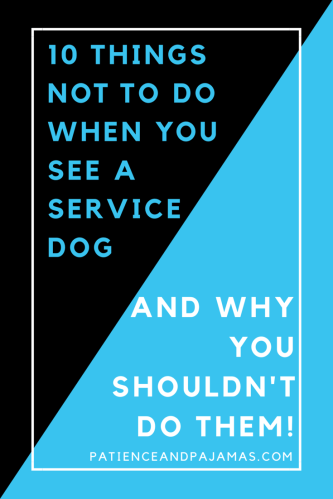 You may only see a service dog once in a blue moon, but these are ten things you definitely don't want to do when you do!