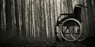 Lonely wheelchair in the forest