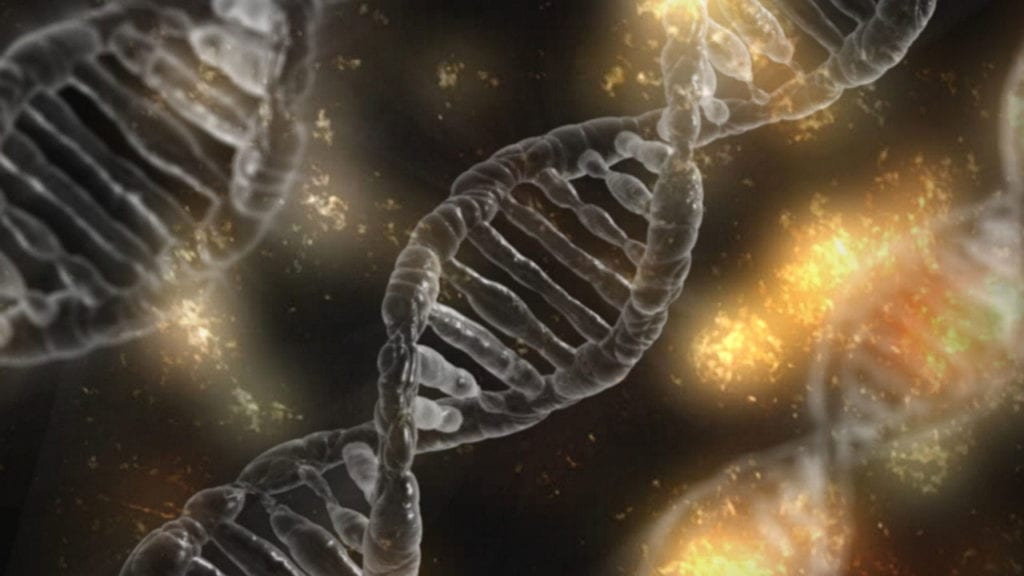 ICYMI: Gene Therapy Creates Synthetic Skin for Boy with Rare Disease