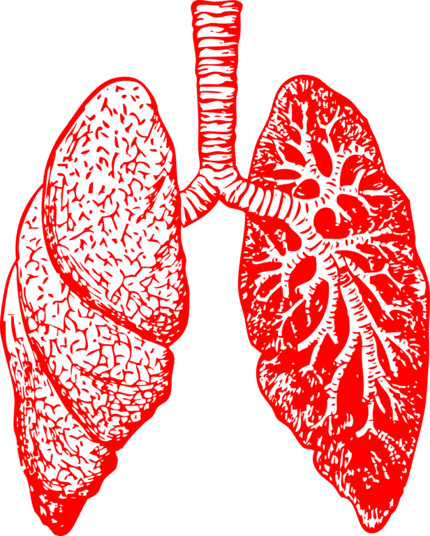 Gene Therapy Breathes New Life Into Pompe Disease Treatment