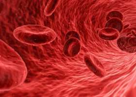 Certain Genes Influence Blood and Marrow Transplant Success