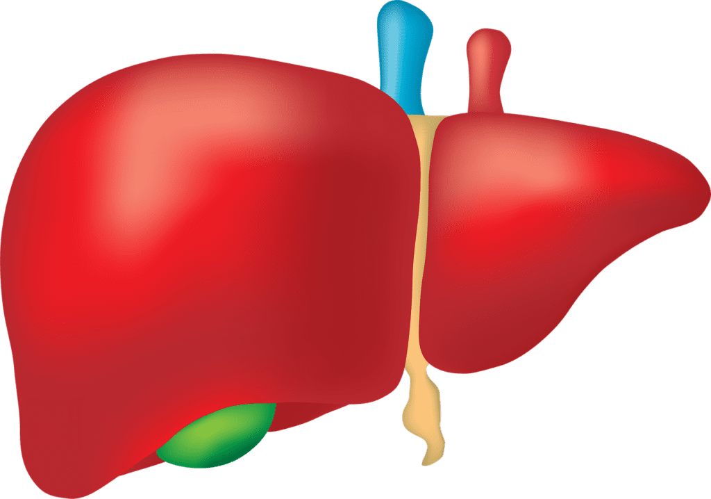 Treatment for Nonalcoholic Steatohepatitis Linked Cirrhosis Will Continue Into Phase 3 Trials