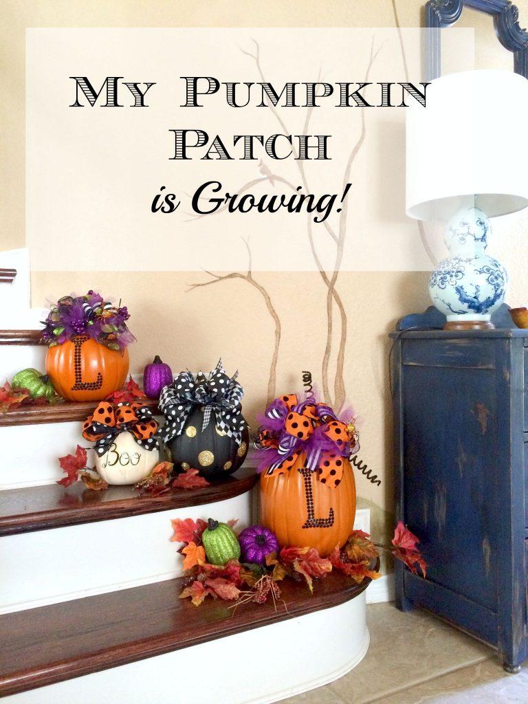 My Pumpkin Patch is Growing