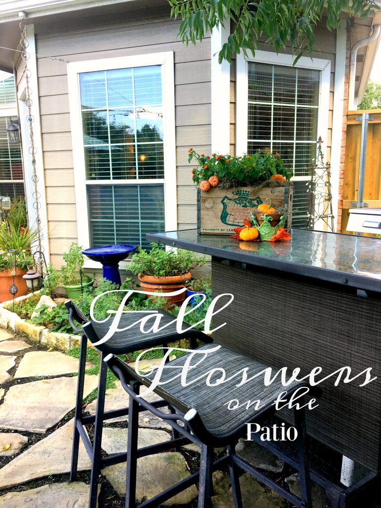 Fall Flowers on the Patio
