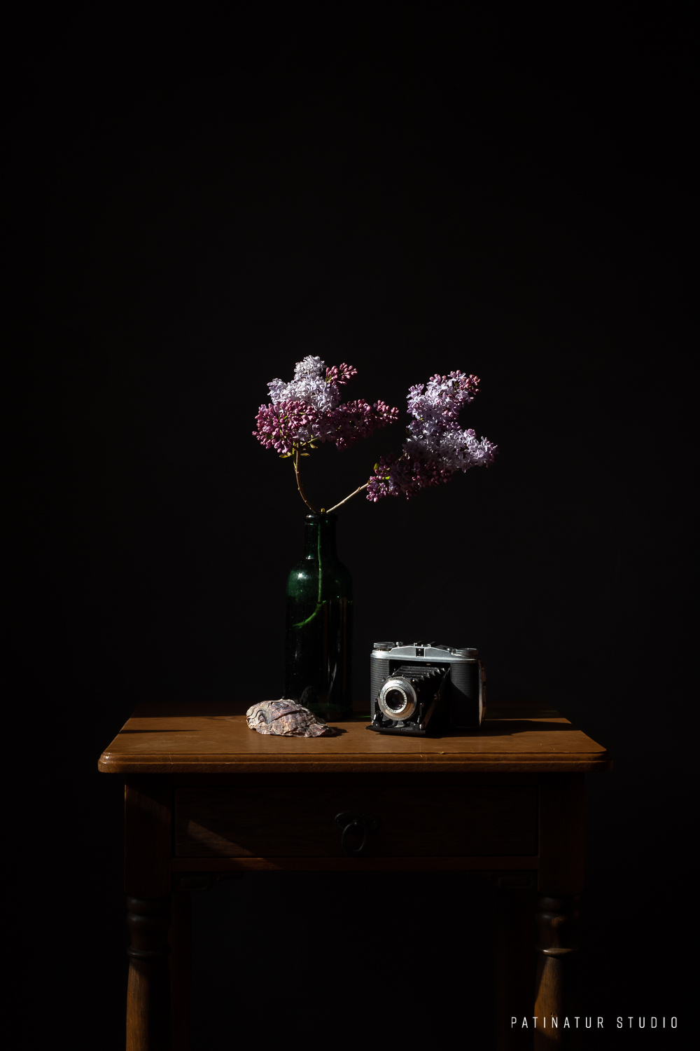 Photo Art | Dark and moody stalt cap images seoill life with lilacs, seashell and vintage camera