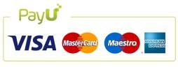 medios de pago con tarjeta de credito patines.pe