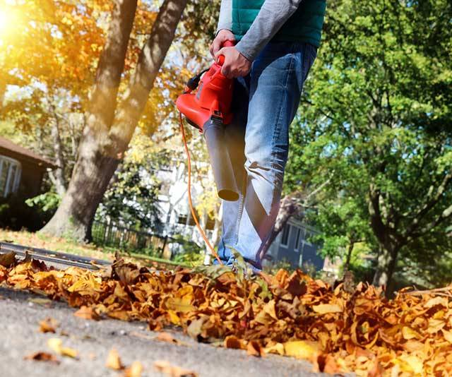 Best Leaf Blowers - Buyer's Guide
