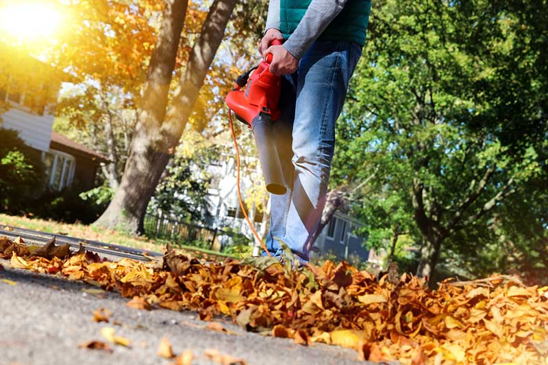 Best Leaf Blowers – Buyer's Guide
