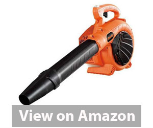 Tanaka TRB24EAP Handheld Leaf Blower Review