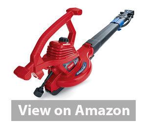 Best Leaf Blower - Toro 51621 Blower Vacuum Review