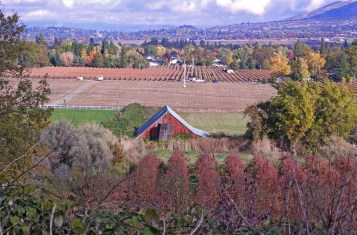 Autumn Orchard & Barn, Rogue Valley