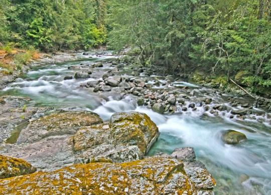 Brietenbush Creek river bend