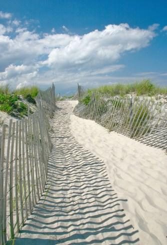 Sag harbor dune walk and fence lr