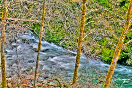 Smith River Alder & Rapid copy