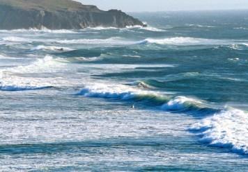 Waves & Gull Bandon Or