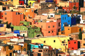 guana rooftop color puzzle