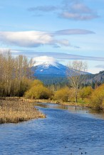 Williamson River & Mt Scott