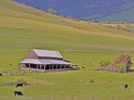 Barn ashland hills