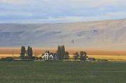 Surprise Valley Homestead , Califonia