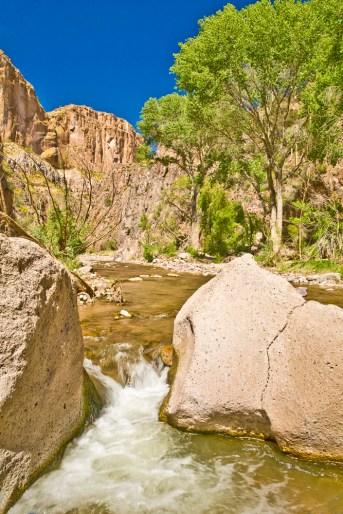 aravaipa canyon cree trees wall