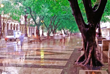 Prado Ghosts in the Rain , Havana
