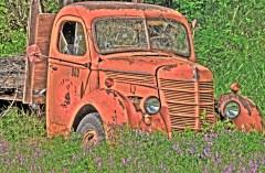 truck orange w vetch copy