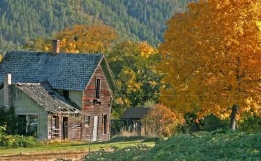 Abandoned Homestead, Williams, OR