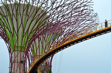 Sky Trees, Gardens by the Bay, Singapore