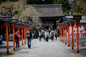 The Hirano Shrine, Kyoto