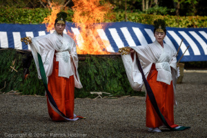 Two shrine maidens perform a slow ceremonial dance with bells during the Fushimi Inari Hitakisai ceremony