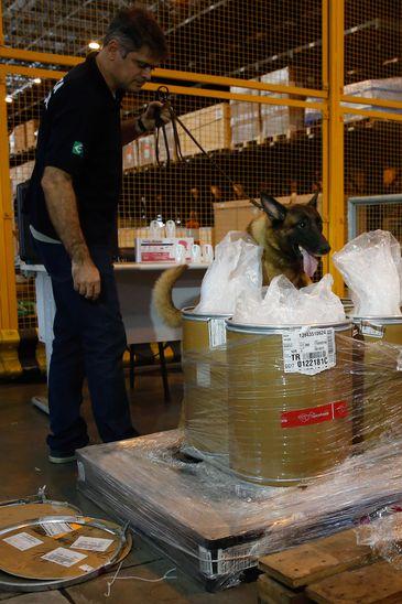 Cão farejador durante apreensão de carga com 100kg de heroína e 50kg ácido pícrico, utilizado para fabricação de explosivos, no Terminal de Cargas do Aeroporto Internacional Tom Jobim/Galeão