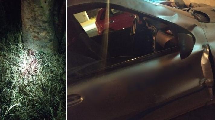 Carmo do Paranaíba: Homem morre após ser prensado entre porta e árvore