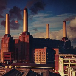 Battersea Power Station Animals