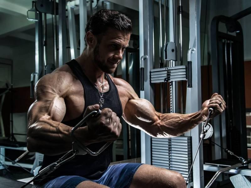 "Krafttraining 101 – ""Bodybuilding & Hypertrophy""-Programme – Teil 3: Heavy Duty, HIT, PITT Force & DC Training"