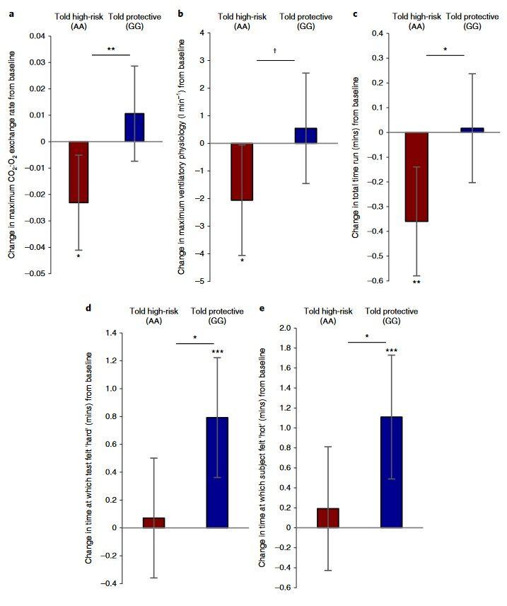 Gentests: DNA-Testergebnisse beeinflussen die Physiologie