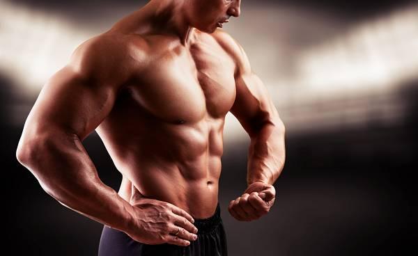 Ein niedriger Testosteronspiegel beeinflusst nicht nur deinen Muskelmasseanteil (und das Potenzial zum Aufbau), sondern viele weitere Faktoren - darunter Immunsystem, Lebensqualität etc.