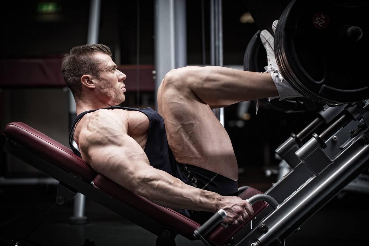 Hypertrophie: Welche Rolle spielt der Bewegungsradius (ROM) im Training beim Muskelaufbau?