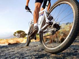 Alternative Energiequellen als Pre- & Intra-Workout Nutrition