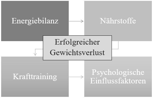 Schematischer Überblick über die Einflussfaktoren einer erfolgreichen Diät – das 4 Säulen Modell. (Bildquelle: Roth & Spiegel, 2020)