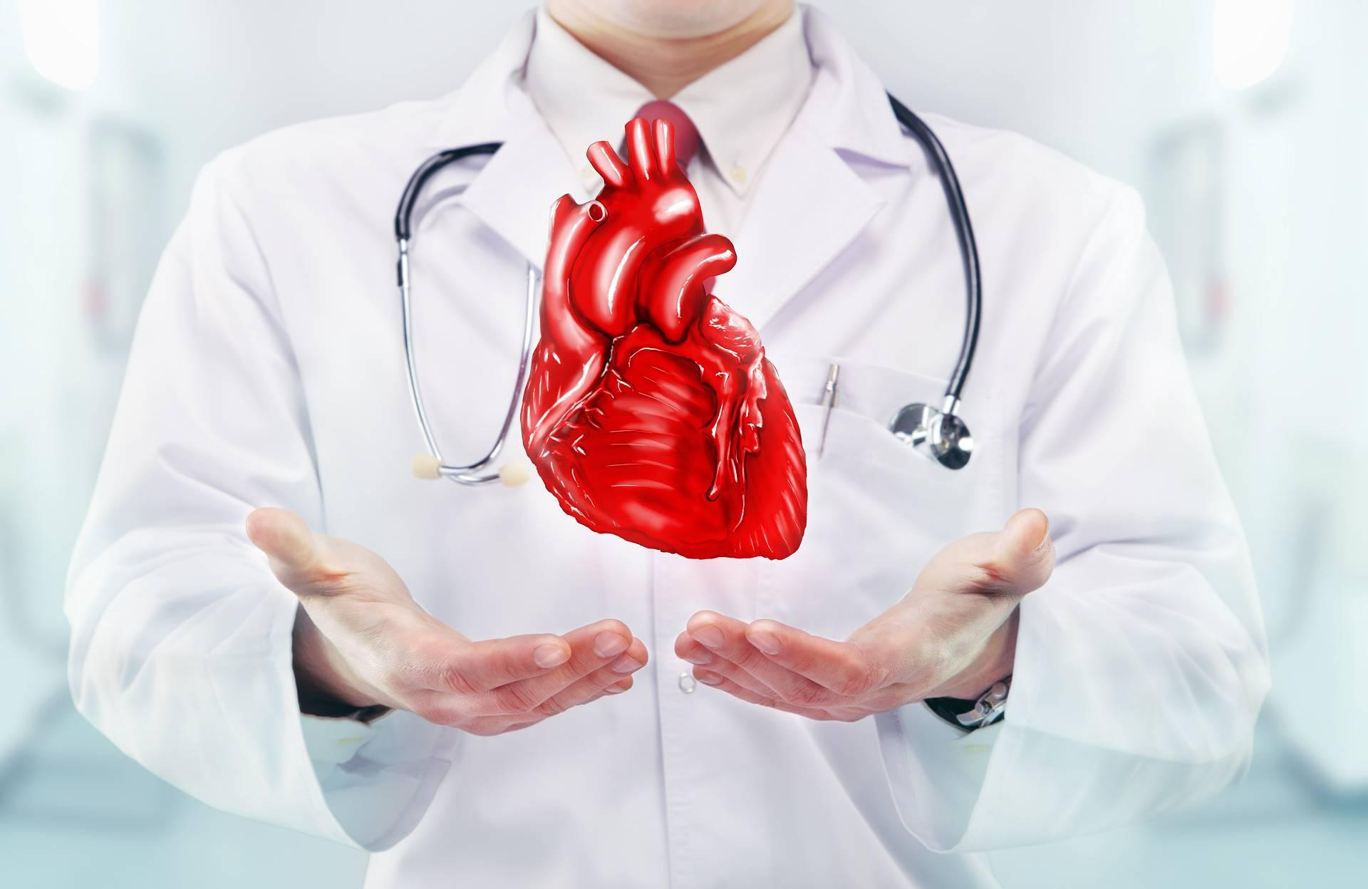 Die Folgen der Schichtarbeit V: Ernährung, Supplementation & Training zur Reduktion des Risikos für Herz-Kreislauf-Erkrankungen