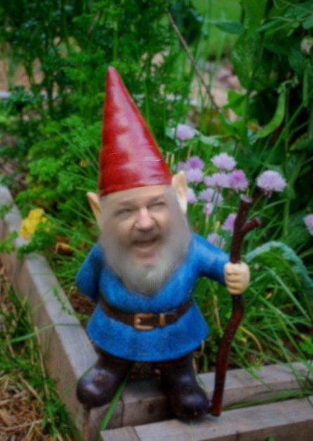Julian Assange as a garden gnome
