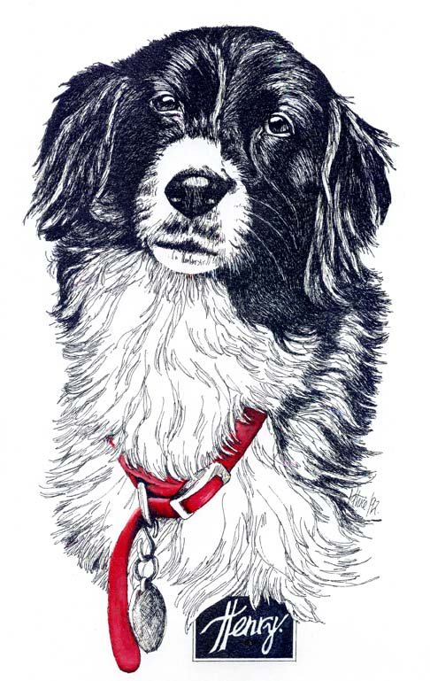"The Henry Painting was a 9""x12"" Pen & Ink Drawing. It was commissioned by Ken as a Christmas present for his wife. Henry had recently passed away and Ken wanted something that would keep her memory with them. She always, always wore the red collar depicted and Ken asked that I make sure to include it and make it red! Sadly, Ken's wife was overwhelmed with grief when she opened the painting and I was told, Christmas was pretty much ruined. :("