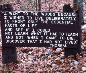 Thoreau quotation near cabin site at Walden Pond