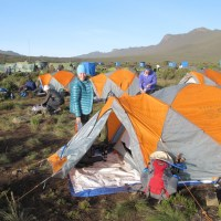 Day 9: Shira 1 Camp to Moir Camp